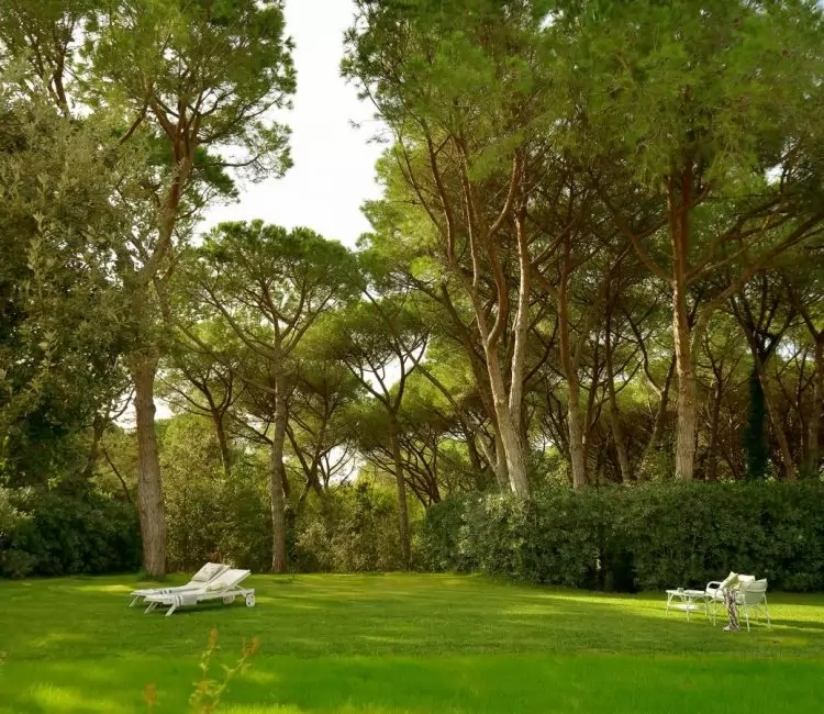 My Toscana Blog - Marina di Bibbona Stella Marina
