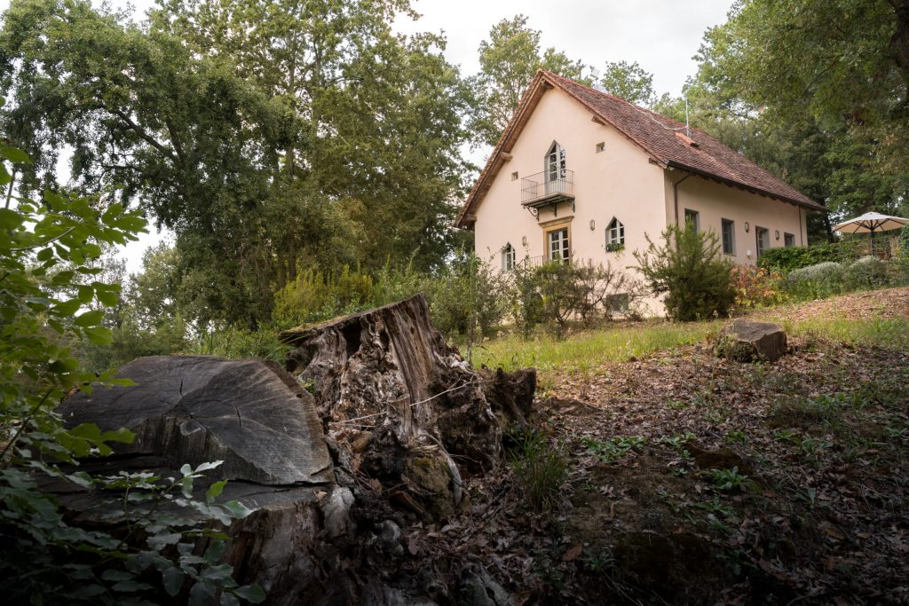 MyToscana - Casa Dante